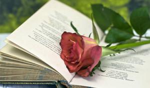 Jenns_Books